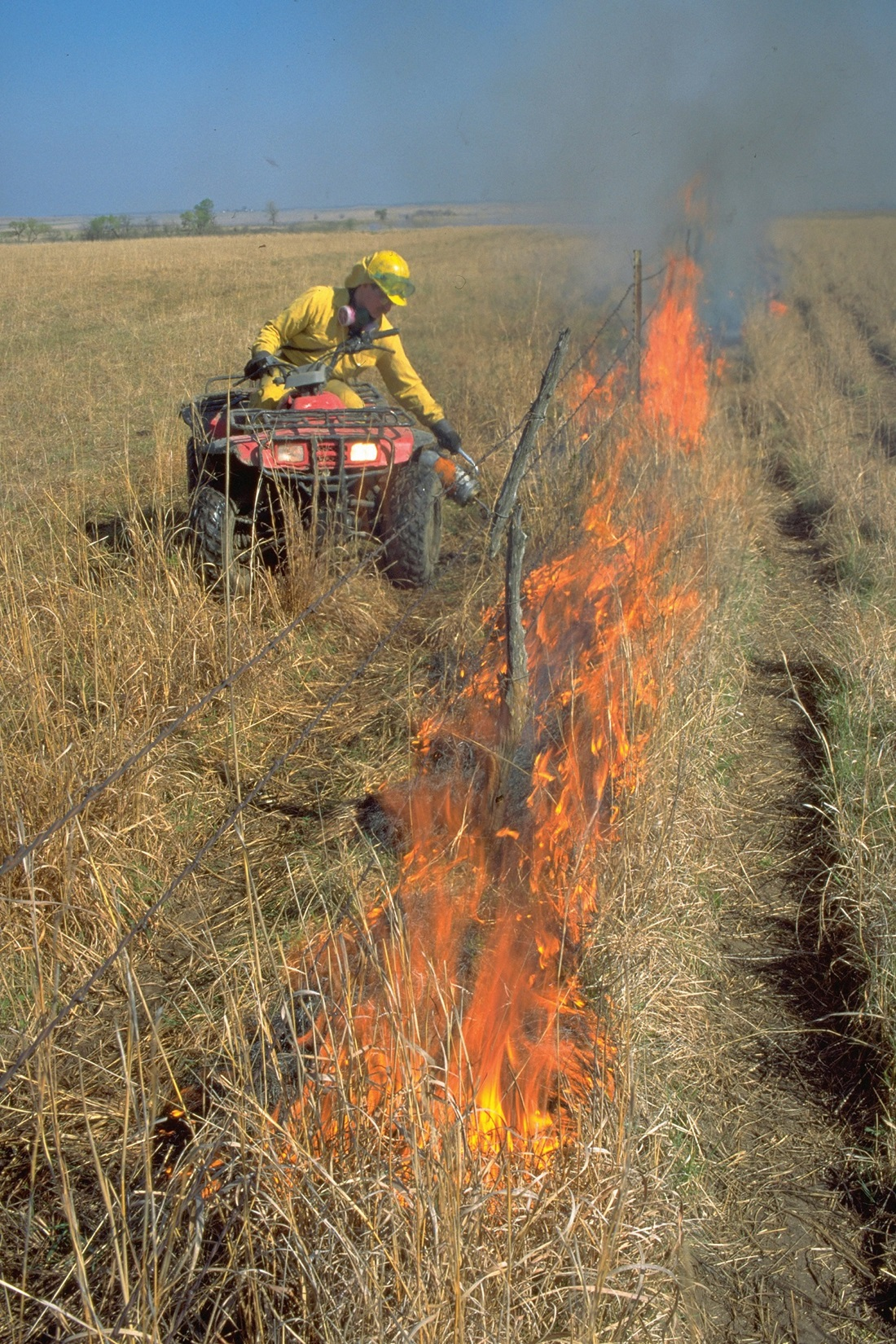 prescribed burn in prairie field