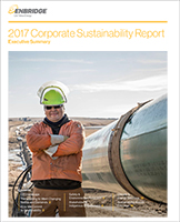 Summary Report of the 2017 Sustainability Report